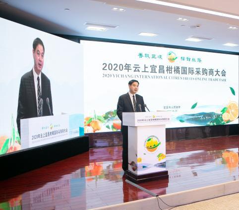 2020年云上宜昌柑橘国际采购商大会圆满落幕